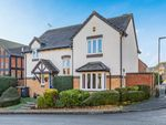 Thumbnail for sale in Oak End, Buntingford
