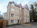 Thumbnail to rent in Sparrowhawk Place, Hatfield, Hertfordshire