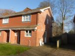 Thumbnail for sale in Glenburn Close, Bexhill-On-Sea
