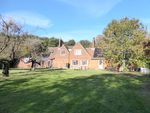 Thumbnail to rent in Haylings Grove, Leiston