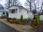 Thumbnail to rent in Howley, Chard