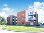Thumbnail to rent in Barnhorn Road, Bexhill-On-Sea