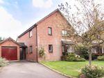 Thumbnail to rent in Holly Farm Close, Caddington, Luton, Bedfordshire