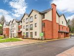 Thumbnail to rent in Coupar Angus Road, Blairgowrie