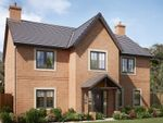 "Thumbnail to rent in ""The Hexham"" at Garden House Drive, Acomb, Hexham"