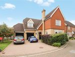Thumbnail to rent in Harnham Drive, Great Notley, Braintree