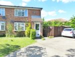 Thumbnail for sale in Quinnell Drive, Hailsham