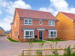 "Thumbnail to rent in ""Alnmouth"" at Aqua Drive, Hampton Water"