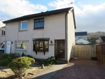 Thumbnail to rent in Montrose Road, Polmont, Falkirk