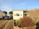 Thumbnail for sale in Mountney Drive, Pevensey Bay, Pevensey