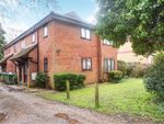 Thumbnail for sale in 244 Spring Road, Sholing, Southampton
