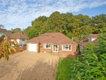 Thumbnail for sale in Main Road, Colden Common, Winchester