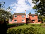 Thumbnail for sale in Thrandeston Road, Brome