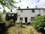 Thumbnail for sale in Springbank, Bryn Celyn, Flintshire