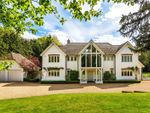 Thumbnail to rent in Farley Green, Albury, Guildford, Surrey