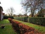 Thumbnail to rent in Parkway Gardens, Welwyn Garden City