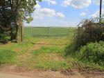 Thumbnail to rent in Sandridgebury Lane, St Albans Herts
