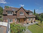 Thumbnail to rent in The Street, Dockenfield, Farnham, Surrey