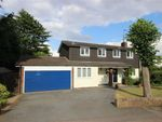 Thumbnail for sale in Douglas Road, Harpenden, Hertfordshire