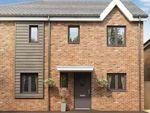 Thumbnail to rent in Elm Gardens, Middleton St George, Darlington