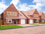 "Thumbnail for sale in ""Hertford"" at Livingstone Road, Corby"