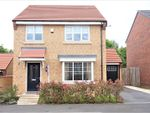 Thumbnail to rent in Buttercup Grove, Stainton, Middlesbrough