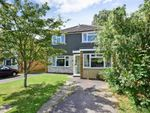 Thumbnail for sale in Idsworth Road, Cowplain, Waterlooville, Hampshire