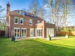Thumbnail for sale in School Road, Windlesham, Surrey