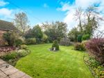 Thumbnail for sale in Wayland Avenue, Watton, Thetford
