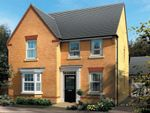 "Thumbnail to rent in ""Holden"" at Craneshaugh Close, Hexham"