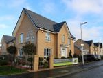 Thumbnail to rent in Brock Place, Motherwell