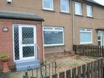 Thumbnail to rent in School Walk, Stenhousemuir, Larbert