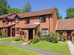 Thumbnail to rent in Willow Tree Drive, Barnt Green