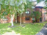 Thumbnail to rent in Handsworth Wood Road, Handsworth Wood, Birmingham
