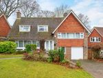 Thumbnail to rent in The Ridings, Epsom