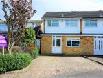 Thumbnail for sale in Birch Close, Romford