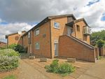 Thumbnail to rent in Morland Close, Hampton