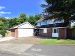 Thumbnail to rent in Knoll Place, Walmer, Deal, Kent