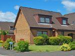 Thumbnail to rent in Ferguson Drive, Falkirk