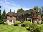 Thumbnail to rent in Hambledon Road, Demead, Waterlooville
