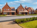 """Thumbnail to rent in """"Harrogate"""" at Blackthorn Crescent, Brixworth, Northampton"""