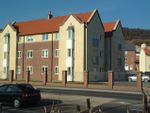 Thumbnail for sale in Ingle Close, Scarborough