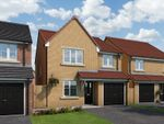 "Thumbnail to rent in ""The Salisbury At The Pastures, Sherburn Hill"" at Front Street, Sherburn Hill, Durham"