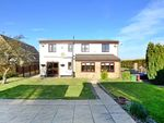 Thumbnail for sale in Sheffield Road, Barlborough, Chesterfield