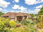 Thumbnail for sale in Winterborne Stickland, Blandford Forum, Dorset