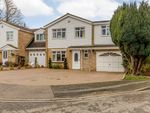 Thumbnail for sale in Osprey Road, Bedford, Bedfordshire