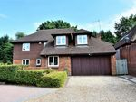 Thumbnail for sale in Springfield, Lightwater, Surrey