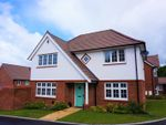 Thumbnail for sale in Fairfax Way, Ottery St. Mary