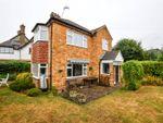 Thumbnail to rent in Avenue Rise, Bushey, Hertfordshire