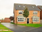 Thumbnail to rent in Bridle Way, Houghton Le Spring